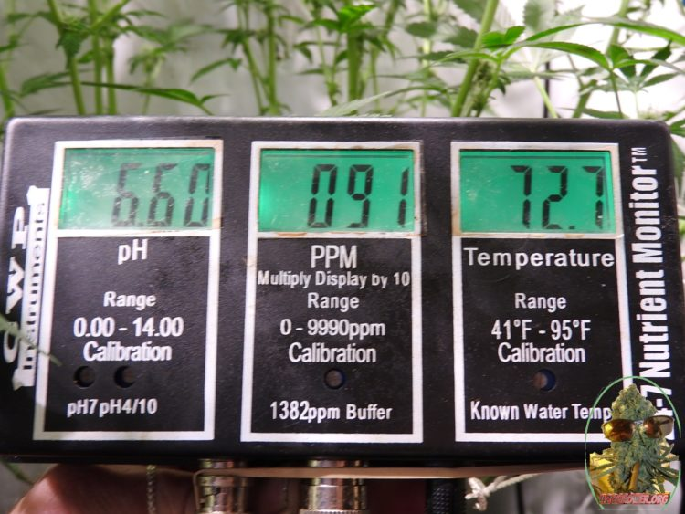 Dropping PH In Hydro - Forget PH Up - Here's The Fix