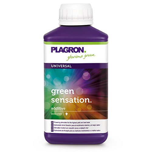 Plagron Green Sensation New Millenium Secret Sauce Recipe